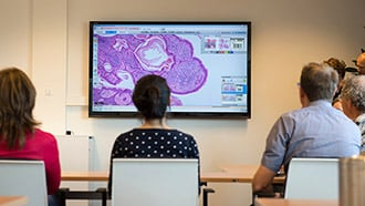 digital pathology image L