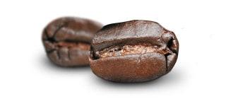 Beantype Arabica